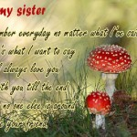 Sister Wishes