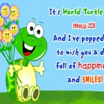 World Turtle Day Pictures