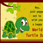 World Turtle Day Quotes